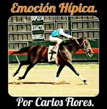Por Carlos Flores para Emoción Hípica Corresponsal Dominicana