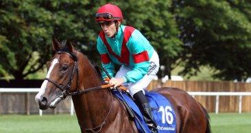 El caballo español Noozhoh Canarias (ESP) reaparece el 21 de abril en el Prix Servanne. Foto Cortesía de Pedigreequery