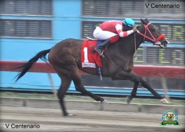 Tempestad (DOM) con el jinete José Ventura. Foto Cortesía de Hipodromo V Centenario