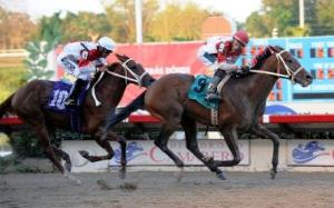Mania A. (PUR) ganando el Derby Puertorriqueño. Foto Cortesía de Hipi-Foto