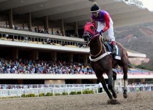Quick Mani (VEN) ganando el José Antonio Paez. Foto Cortesia de Hector Castillo