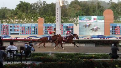Registro ganando la Copa Gobernador Foto Cortesia de Maura Horse Race Photos PR