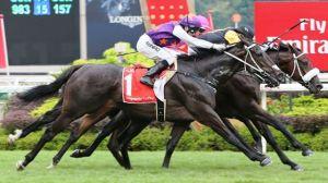 Final del Singapore Derby Ganado por Quechua (ARG) Foto Cortesía de Singapore Turf Club