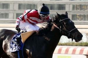 The Dream (CHI) ganando el 1000 Guineas Foto Cortesía de Hipodromo de Chile
