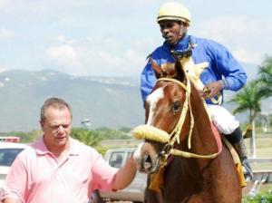 Dos veces caballo del año Bigman in Town (JAM) Foto Cortesía de Jamaica Gleaner