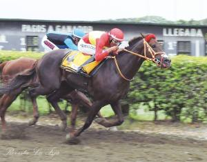 Fliquitriqui (ECU) ganando el Derby Nacional. Foto Cortesía de Revista La Fija