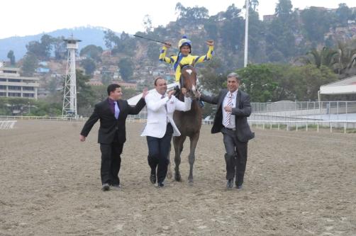Supremo (VEN) es un hijo del ganador de la Copa Velocidad 2008 King Seraf (VEN). Foto Cortesía Hipicomputo2000