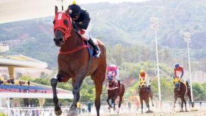 El caballo mayor ganó fácilmente el Clásico Simón Bolivar edición 2015. Foto Cortesía de Entorno Inteligente