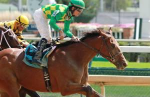 Keen Ice (USA), ganador del Travers, buscará sorprender en Dubai. Foto Cortesía de Horse Racing Nation