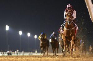 Special Fighter (IRE) ganando el Round 3 del Al Maktoum Challenge Foto Cortesia de HorseRacingNation
