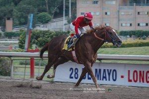 Dahy (USA) dejando marca de pista en el Hipódromo de las Américas. Foto Cortesía de Miguel Angel Espinoza