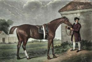 Eclipse (invicto campeón británico) Tomado de Wikipedia (por George Stubbs)