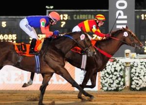 Saltarín Dubai (ARG) superando a Don Inc (ARG) Foto Cortesía Hipodromo de Palermo