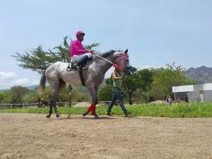 El Hipódromo Los Laureles está localizado en Chiquimula, Guatemala Foto Cortesía de Francisco Morataya