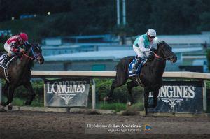 Inspirato (MEX) ganando el Clásico Dominciano  Foto Cortesía de Miguel Angel Espinoza