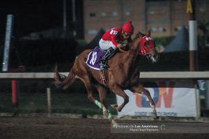Jiribilla (MEX) ganadora del Clásico Vivian Record. Foto Cortesía de Miguel Angel Espinoza