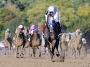 Arrogate (USA) Foto Cortesía de USA Today