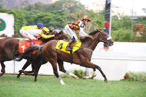 Eleito (BRZ) ganando el Clásico Escorial con Deep End (BRZ) llegando segundo Foto Cortesía de N1 Cavalos
