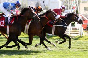 Tinku (CHI) ganando la Copa Jackson Foto Cortesía de Turf Diario