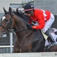 Kukulkán (MEX), el caballo mexicano que desafiará a lo mejor de Estados Unidos