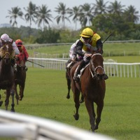 Martinica se prepara para su Grand Prix