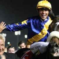 Los caballos pura sangre latinoamericanos de mayor dinero ganado en la historia