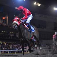 Kublaigo (USA) se llenó de gloria, logra la carrera de mayor tradición en México