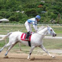 My Running Mate (VEN) gana en la isla de Tortola