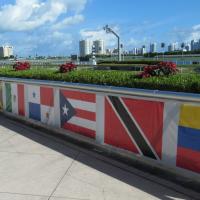 Catorce purasangres a participar en el Clásico del Caribe de 2019
