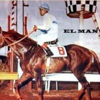 Elites del Caribe | El Manut (PAN) - Uno de los grandes caballos nacionales panameños