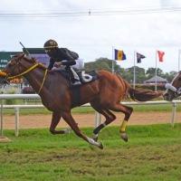 Déjà Vu (BAR) airoso en el Barbados Guineas