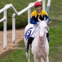 De pelaje puramente blanco Sodashi (JPN) gana el Hanshin Juvenile Fillies