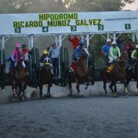 Terminada la temporada 2020 en los hipódromos de la costa sur de Guatemala
