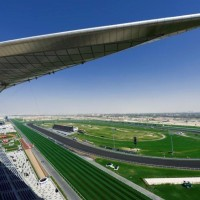 "Siete purasangres latinoamericanos en el ""Super Saturday"" en Meydan"
