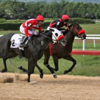 En veremos el reinicio de las carreras en Trinidad & Tobago